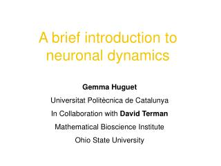 A brief introduction to neuronal dynamics