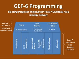Blending Integrated Thinking with Focal / Multifocal Area Strategy Delivery
