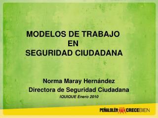 Norma Maray Hernández Directora de Seguridad Ciudadana IQUIQUE Enero 2010