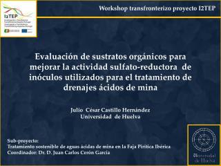 Sub-proyecto: Tratamiento sostenible de aguas ácidas de mina en la Faja Pirítica Ibérica