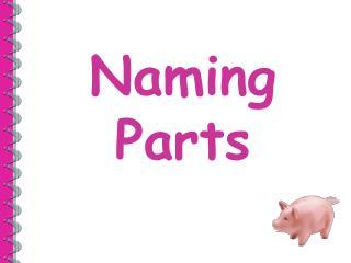 Naming  Parts