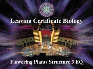 Flowering Plants Structure 3 EQ