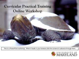 Curricular Practical Training Online Workshop