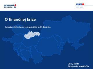 O finančnej kríze 9 október 2008, Konzervatívny inštitút M. R. Štefánika