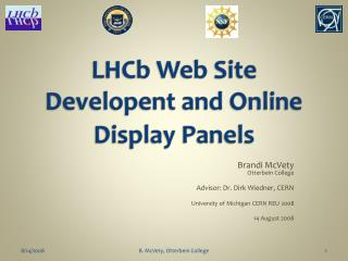 LHCb Web Site Developent and Online Display Panels