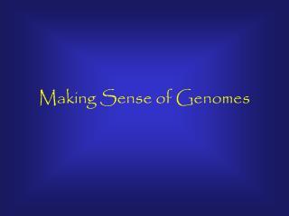 Making Sense of Genomes