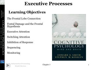 Executive Processes