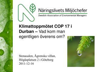 Stenasalen, Ågrenska villan,  Högåsplatsen  2 i Göteborg 2011-12-16