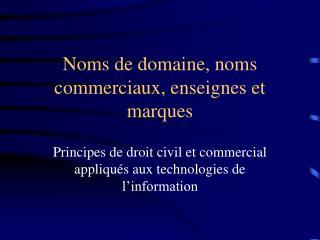 Noms de domaine, noms commerciaux, enseignes et marques