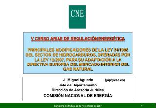 J. Miguel Aguado            ( jap@cne.es) Jefe de Departamento