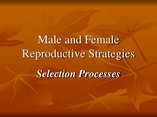 Male and Female Reproductive Strategies