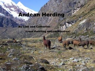 Andean Herding  By Line and Catherine         cave dwelling extraordinaires