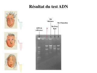 R�sultat du test ADN
