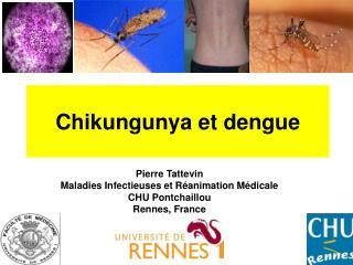 Chikungunya et dengue