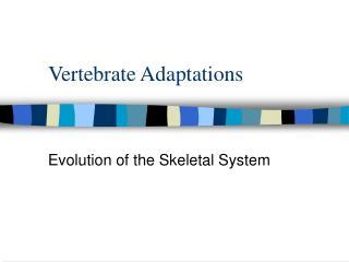 Vertebrate Adaptations