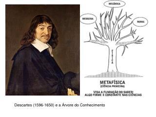 Descartes (1596-1650) e a Árvore do Conhecimento