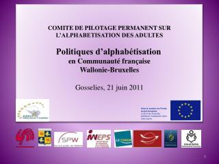 COMITE DE PILOTAGE PERMANENT SUR L'ALPHABETISATION DES ADULTES Politiques d'alphabétisation