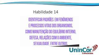 Habilidade 14