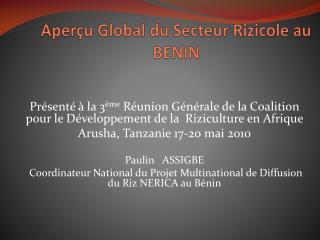 Aperçu Global du Secteur Rizicole au BENIN