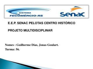 E.E.P. SENAC PELOTAS CENTRO HISTÓRICO PROJETO MULTIDISCIPLINAR
