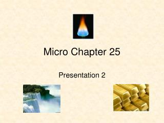 Micro Chapter 25