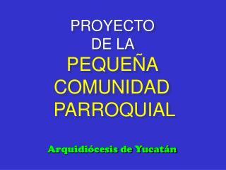 PROYECTO  DE LA PEQUEÑA  COMUNIDAD  PARROQUIAL