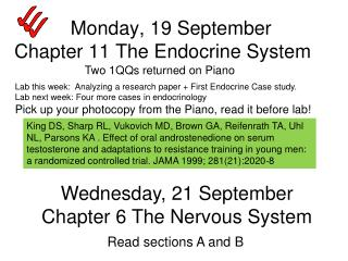 Monday, 19 September Chapter 11 The Endocrine System