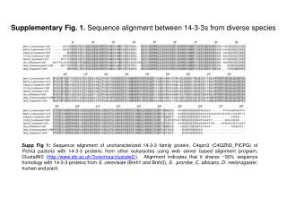 Supplementary Fig. 1.  Sequence alignment between 14-3-3s from diverse species