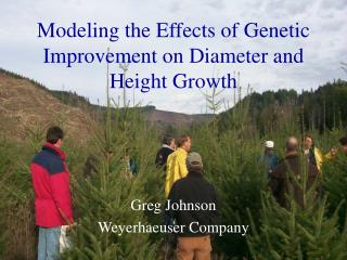 Modeling the Effects of Genetic Improvement on Diameter and Height Growth