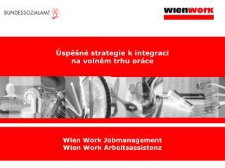 Úspěšné strategie k i ntegra ci na volném trhu práce