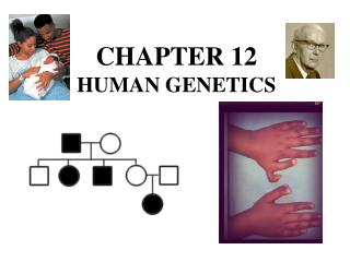 CHAPTER 12 HUMAN GENETICS