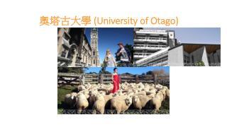 奧塔古大學  (University of  Otago )