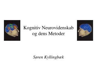 Kognitiv Neurovidenskab  og dens Metoder
