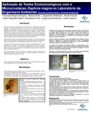 Francyele Regina Stringhini,  Bolsista PUIC – Engenharia Ambiental – Ponte Imaruim.