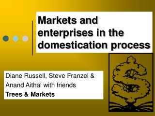 Markets and enterprises in the domestication process