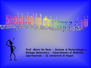 Biotecnologie alcuni degli attori: microrganismi ed enzimi