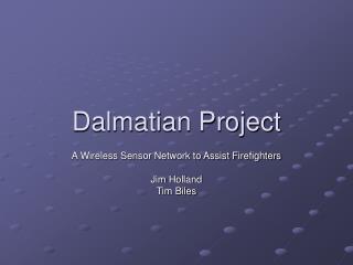Dalmatian Project