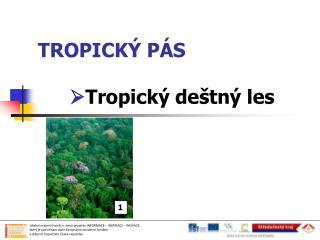 TROPICKÝ PÁS  Tropický deštný les