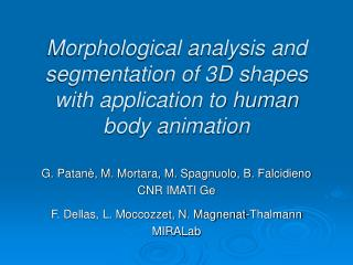 Morphological analysis and segmentation of 3D shapes with application to human body animation