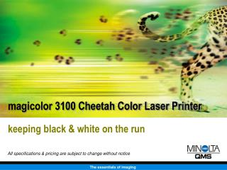 magicolor 3100 Cheetah Color Laser Printer