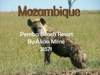 Pemba Beach Resort      By:Alicia Milne              31571