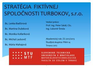 STRATÉGIA  FIKTÍVNEJ SPOLOČNOSTI TURBOKOV, s.r.o.