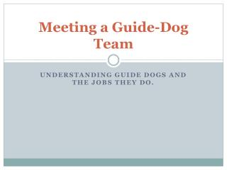 Meeting a Guide-Dog Team