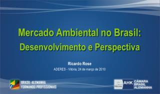 Mercado Ambiental no Brasil: Desenvolvimento e Perspectiva