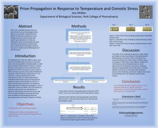 Prion Propagation in Response to Temperature and Osmotic Stress Jess  Dhillon