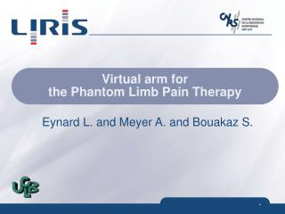 Virtual arm for  the Phantom Limb Pain Therapy