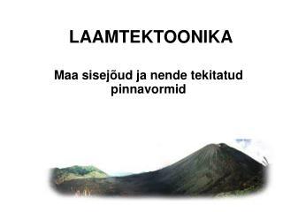 LAAMTEKTOONIKA