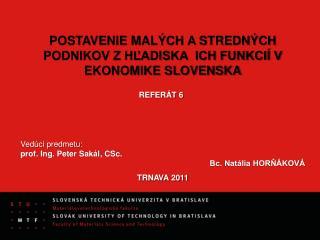 POSTAVENIE MALÝCH A STREDNÝCH PODNIKOV Z HĽADISKA  ICH FUNKCIÍ V EKONOMIKE SLOVENSKA REFERÁT 6