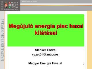 Slenker Endre vezető főtanácsos Magyar Energia Hivatal