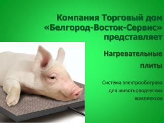 Компания Торговый дом «Белгород-Восток-Сервис» представляет